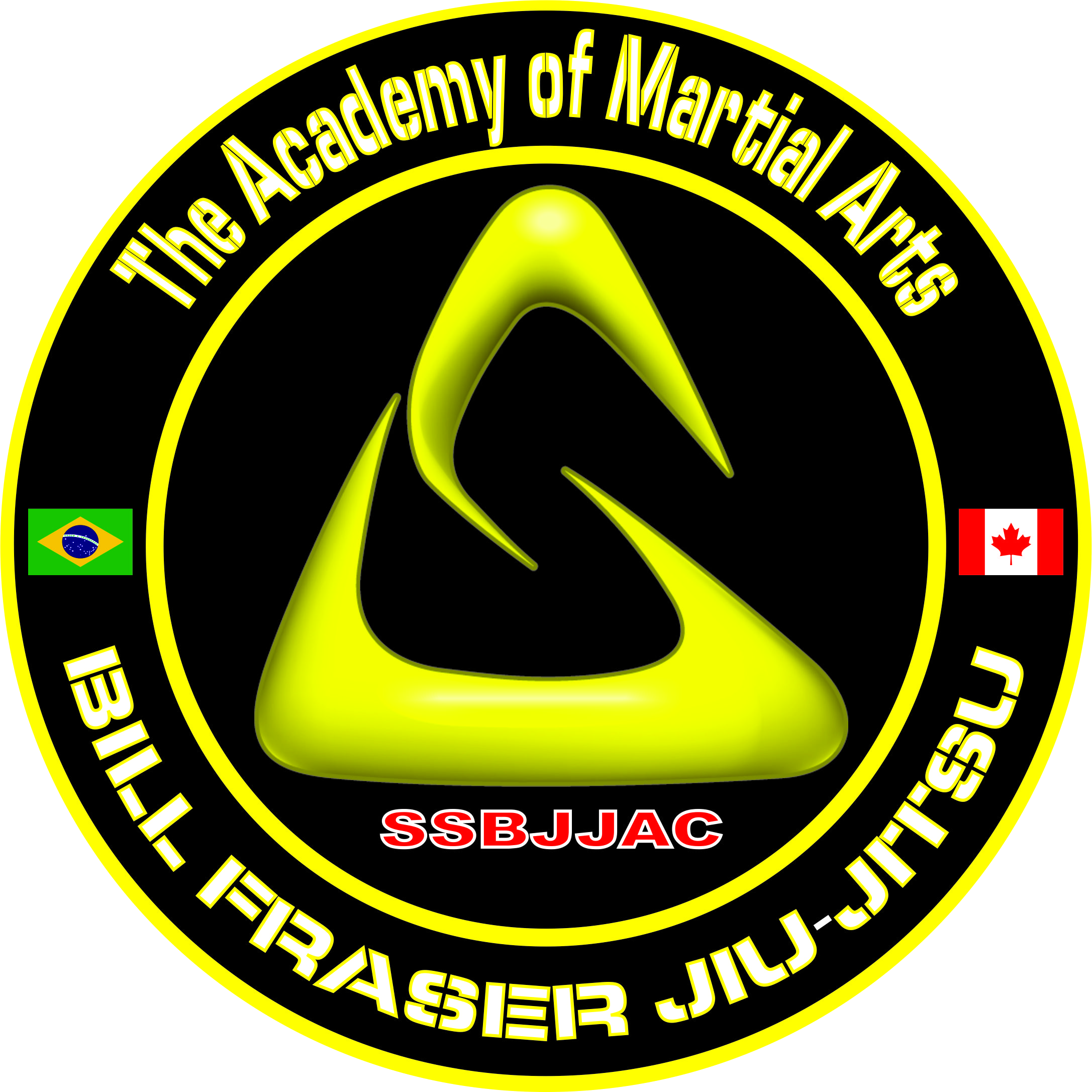 The Academy of Martial Arts